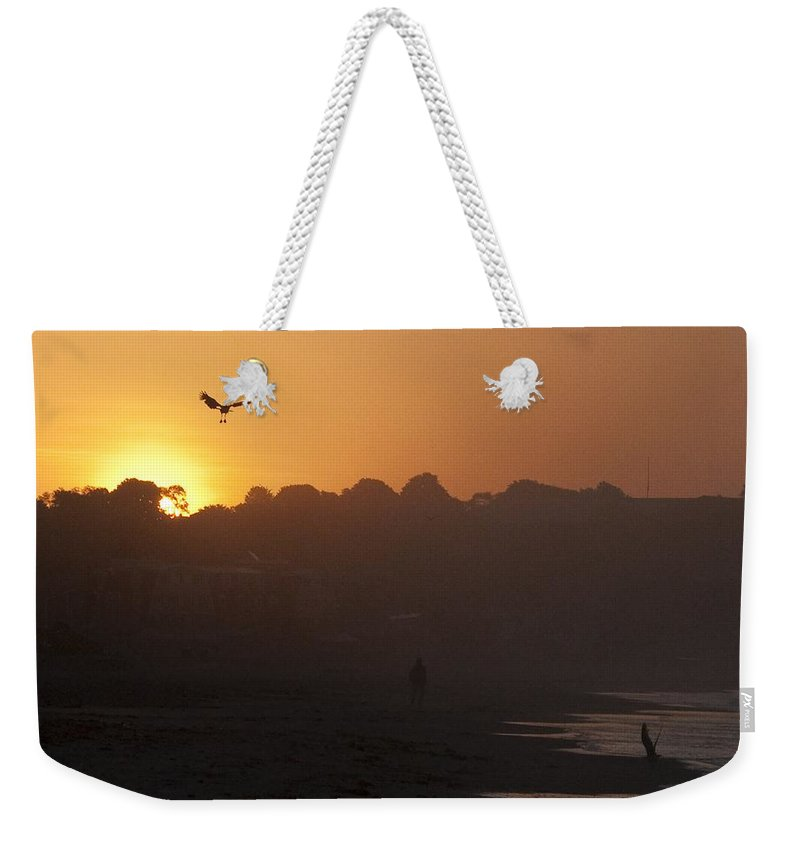 Seagull Weekender Tote Bag featuring the photograph Dawn Patrol by Steven Natanson