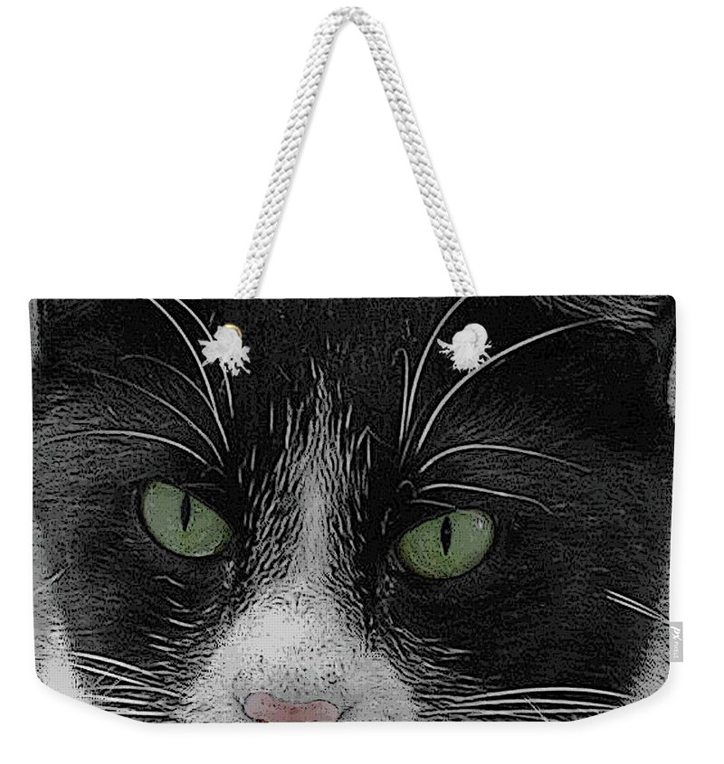 Cat Weekender Tote Bag featuring the digital art Day Dreaming by DigiArt Diaries by Vicky B Fuller