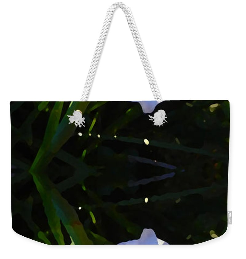 Daylily Weekender Tote Bag featuring the painting Day Lily Reflection by Amy Vangsgard