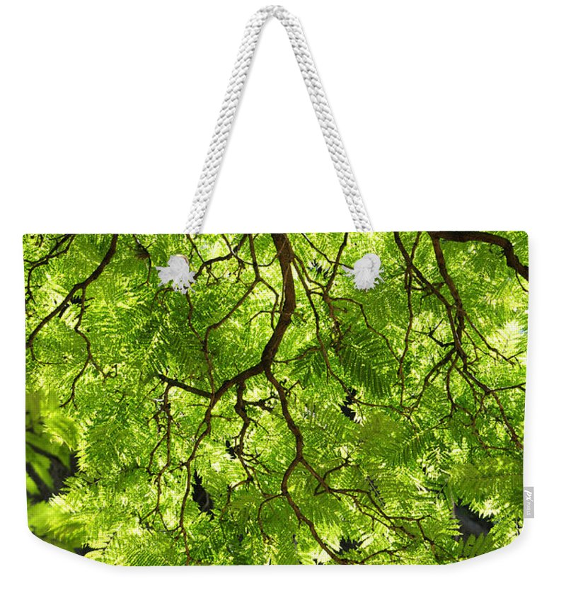 Skiphunt Weekender Tote Bag featuring the photograph Daydream by Skip Hunt