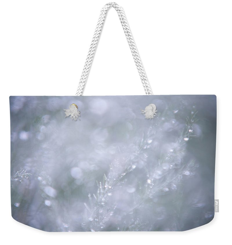 Jenny Rainbow Fine Art Photography Weekender Tote Bag featuring the photograph Dazzling Silver World by Jenny Rainbow