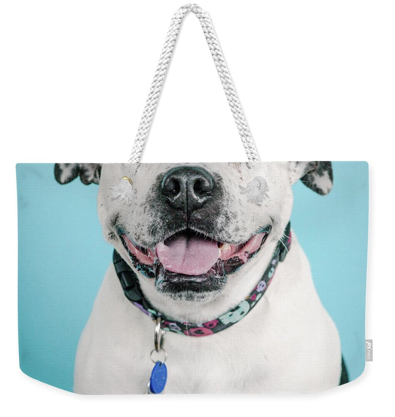 Dogs Weekender Tote Bag featuring the photograph Deacon 3 by Pit Bull Headshots by Headshots Melrose