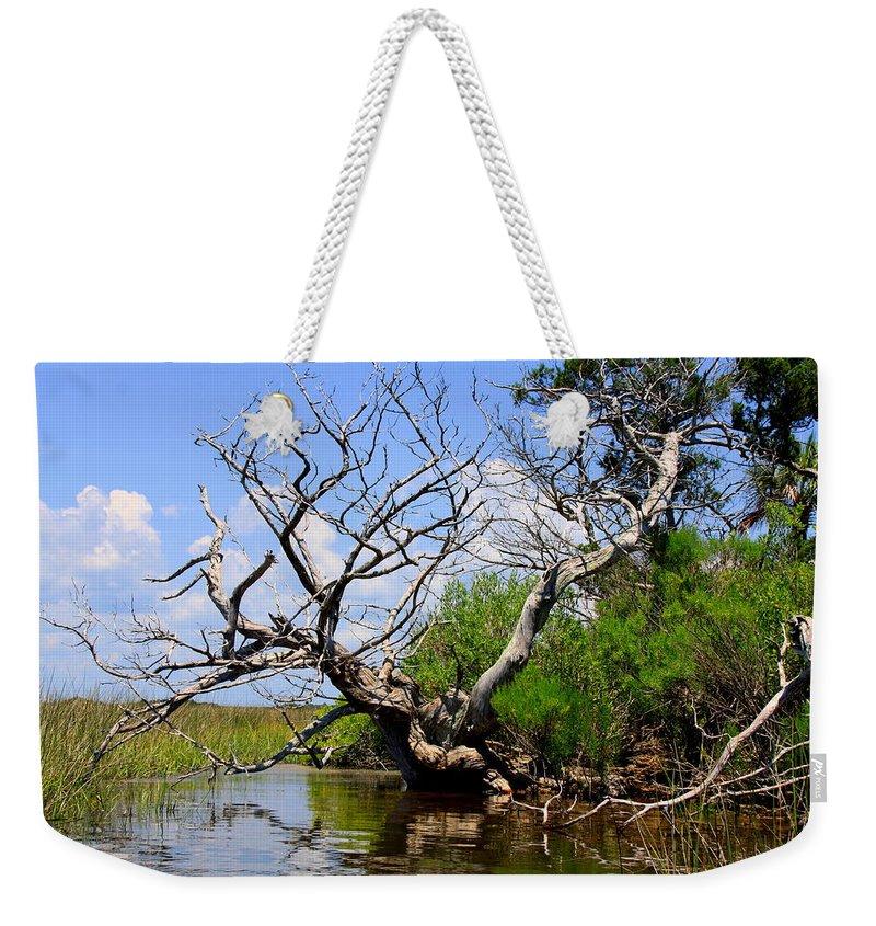 Dead Tree Weekender Tote Bag featuring the photograph Dead Cedar Tree In Waccasassa Preserve by Barbara Bowen
