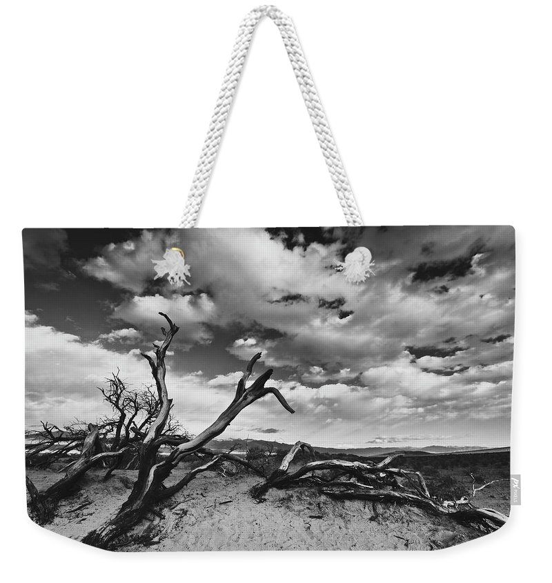 Landscape Weekender Tote Bag featuring the photograph Dead Trees at Mesquite Dunes by Nathan Spotts