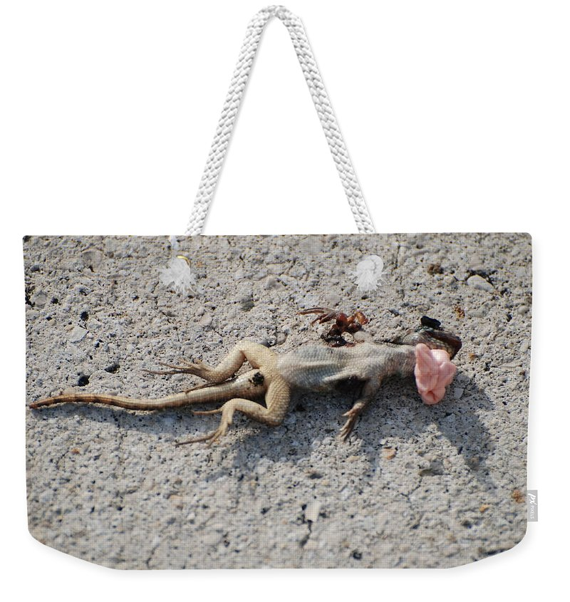 Lizards Weekender Tote Bag featuring the photograph Death By Gum by Rob Hans