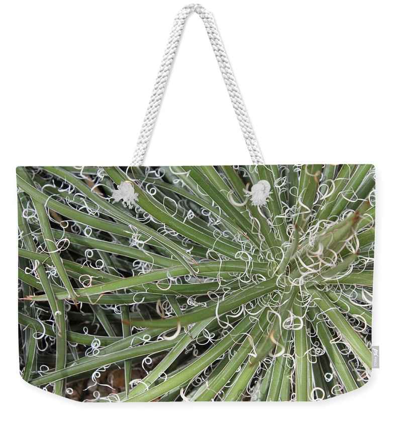 Nature Weekender Tote Bag featuring the photograph Decorations by Munir Alawi