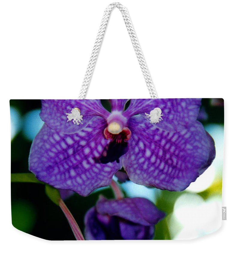 Orchid Weekender Tote Bag featuring the photograph Deep Blue Orchid by Susanne Van Hulst