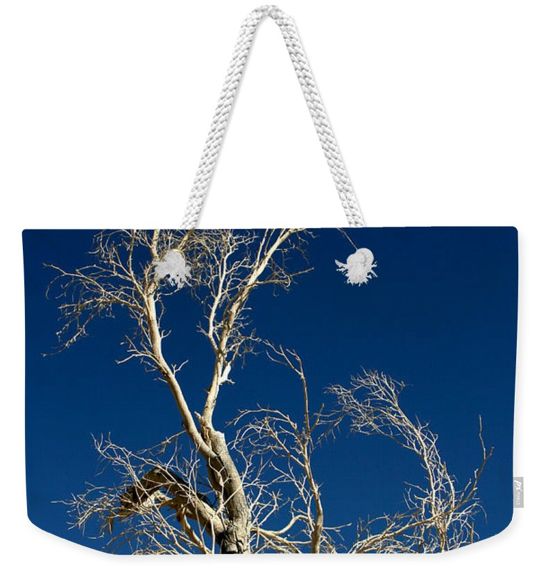 Tree Weekender Tote Bag featuring the photograph Deep Blue White Tree by Chris Brannen