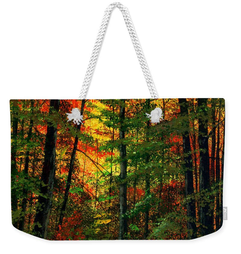 Landscape Weekender Tote Bag featuring the painting Deep In The Forest by Frank Wilson