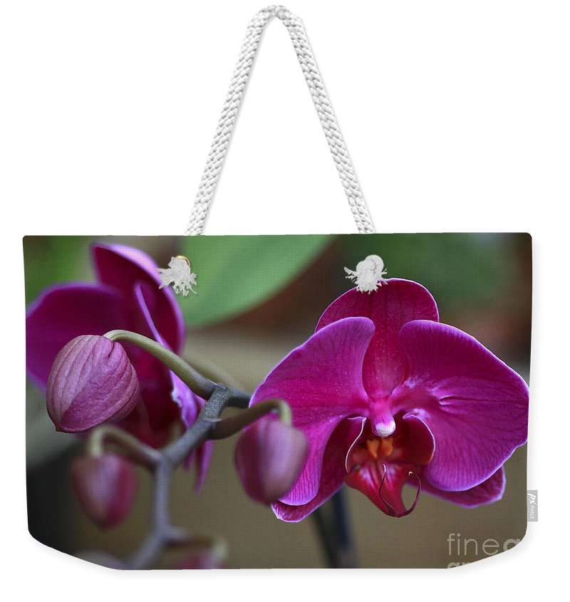 Flower Weekender Tote Bag featuring the photograph Deep Pink by Deborah Benoit