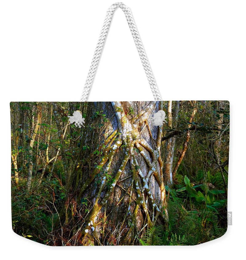 Woods Weekender Tote Bag featuring the photograph Deep Woods by David Lee Thompson