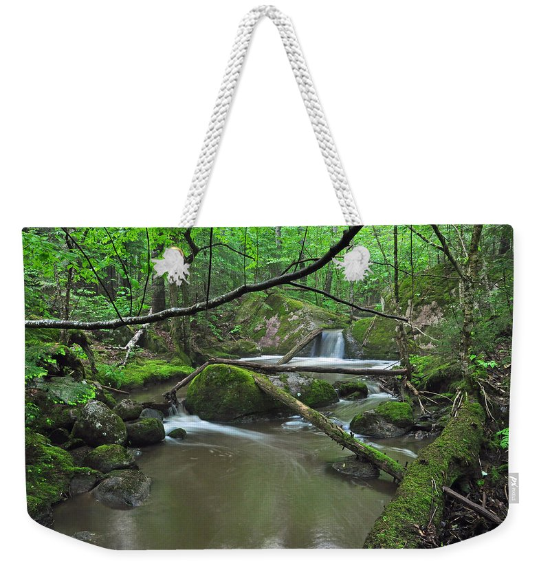 Stream Weekender Tote Bag featuring the photograph Deep Woods Stream 2 by Glenn Gordon