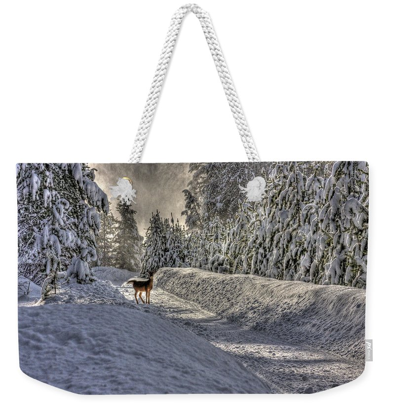 Landscape Weekender Tote Bag featuring the photograph Deer In Snow by Lee Santa