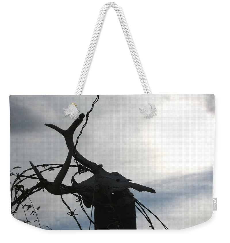 Deer Skull Barbwire Sky Clouds Death Life Horns Weekender Tote Bag featuring the photograph Deer Skull In Wire by Andrea Lawrence