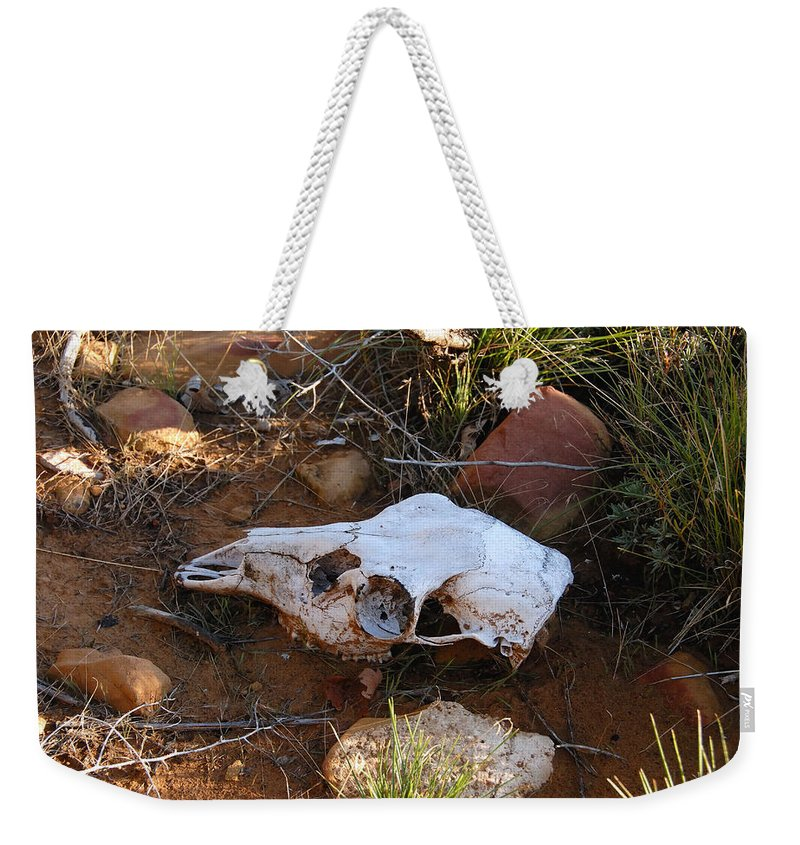 Skull Weekender Tote Bag featuring the photograph Deer Spirit Mesa by David Lee Thompson