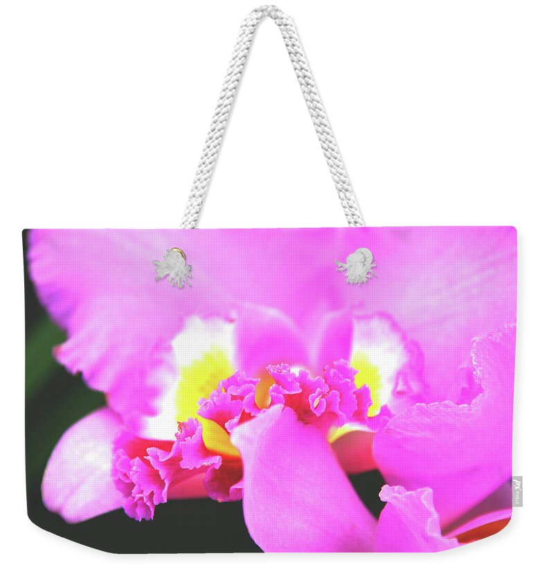Orchids Weekender Tote Bag featuring the photograph Delicate In Pink by Susanne Van Hulst