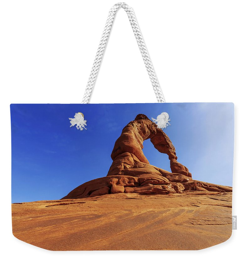 Nature Weekender Tote Bag featuring the photograph Delicate Perspective by Chad Dutson