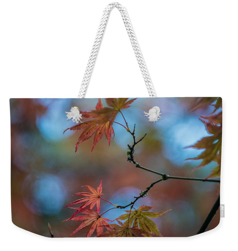 Fall Colors Weekender Tote Bag featuring the photograph Delicate Signs Of Autumn by Mike Reid