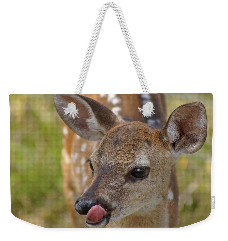 Deer Weekender Tote Bag featuring the photograph Delicious Deer by Heather Coen