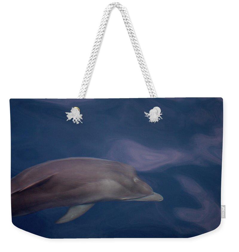 Valasretki Weekender Tote Bag featuring the photograph Delphin 9 by Jouko Lehto