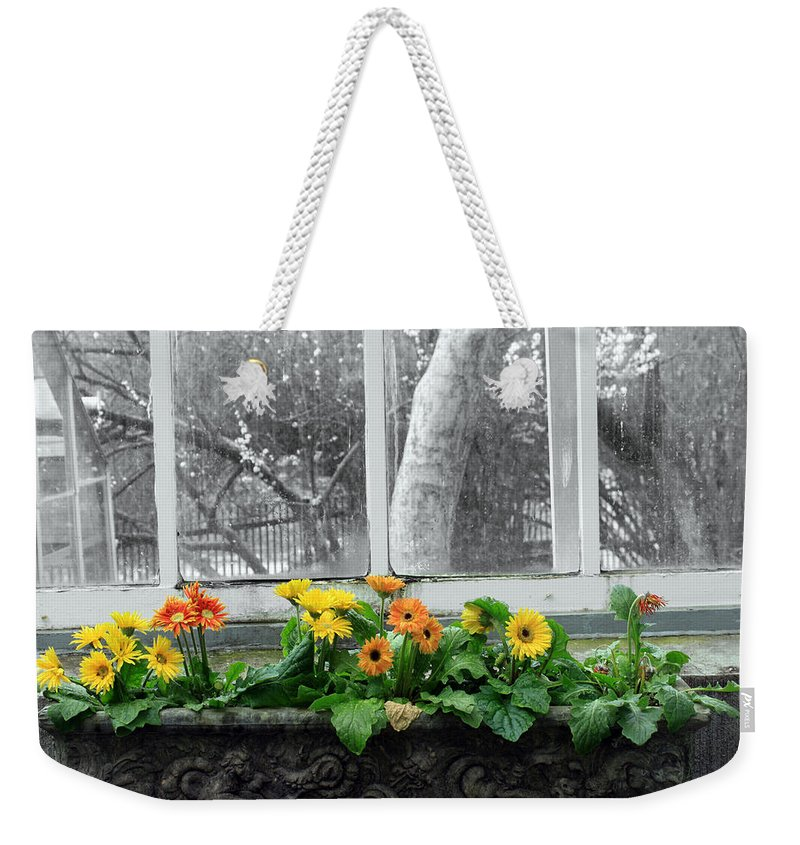 Flowers Weekender Tote Bag featuring the photograph Depression by Munir Alawi