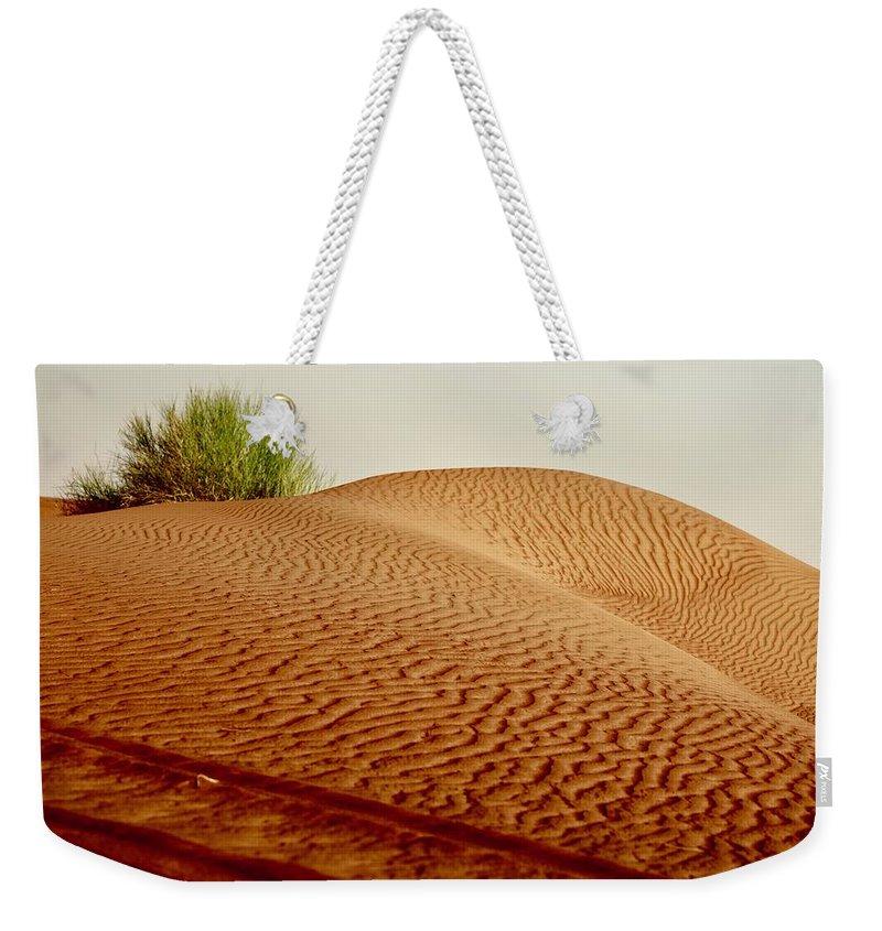 deseart safari weekender tote bag for sale by thomas mathew