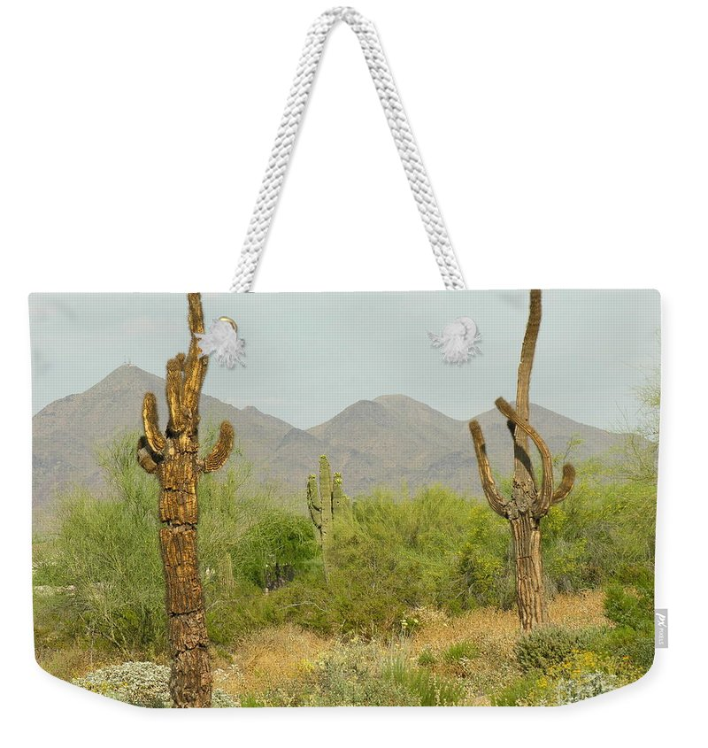Cactus Weekender Tote Bag featuring the photograph Desert Cactus by Diane Greco-Lesser