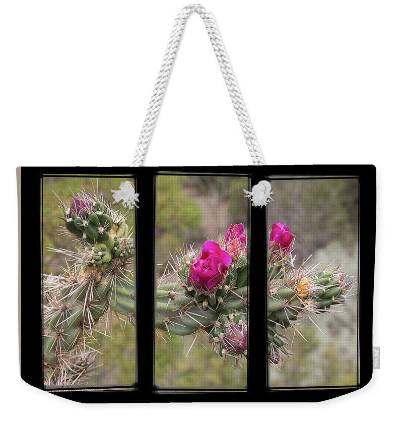 Cactus Weekender Tote Bag featuring the photograph Desert Cactus Triptych by Patti Deters