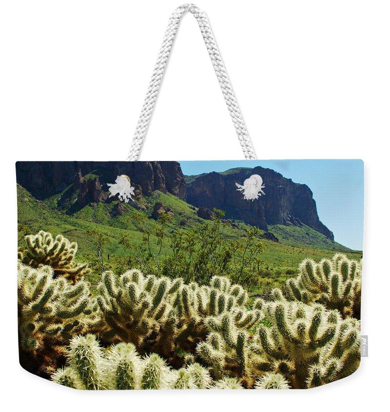 Arizona Weekender Tote Bag featuring the photograph Desert Cholla 1 by Jill Reger