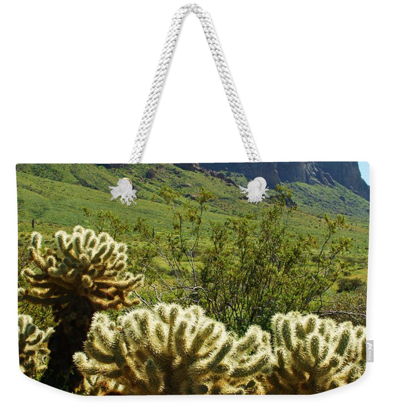 Arizona Weekender Tote Bag featuring the photograph Desert Cholla 2 by Jill Reger