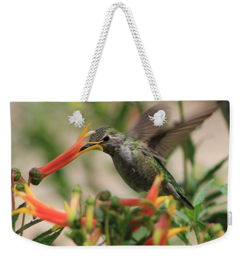 Humming Bird Weekender Tote Bag featuring the photograph Desert Humming by Kathy Bassett