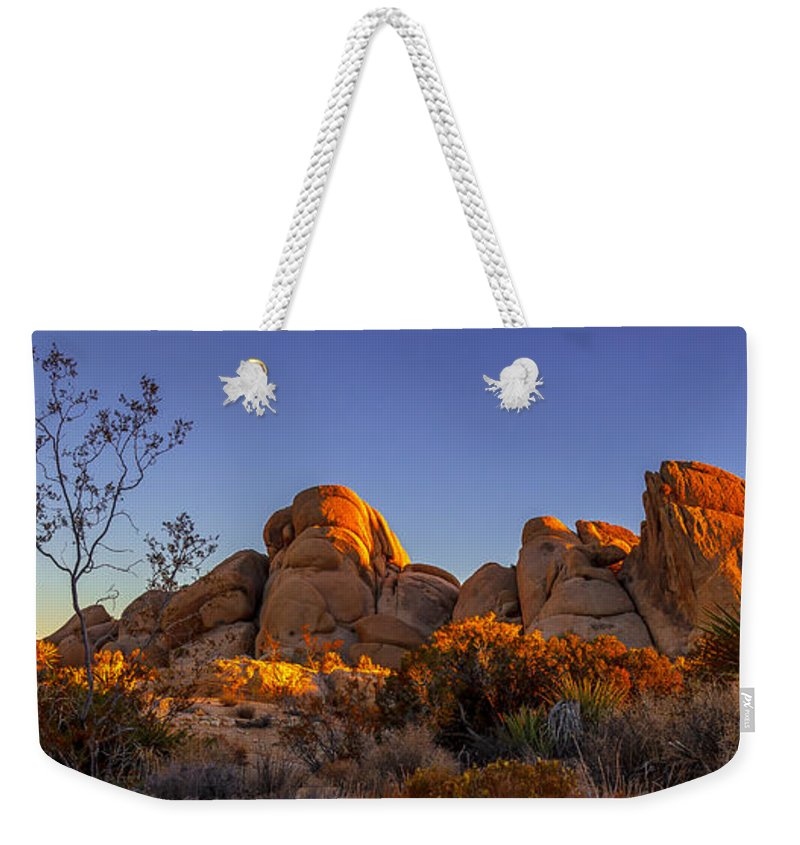Landscape Weekender Tote Bag featuring the photograph Desert Light by Jason Roberts
