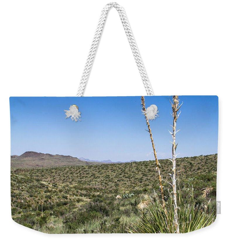 Big Bend National Park Weekender Tote Bag featuring the photograph Desert Spoon by Robert J Caputo