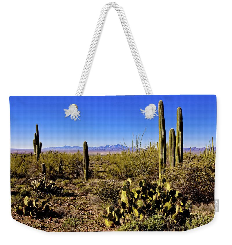 Desert Spring Weekender Tote Bag featuring the photograph Desert Spring by Chad Dutson