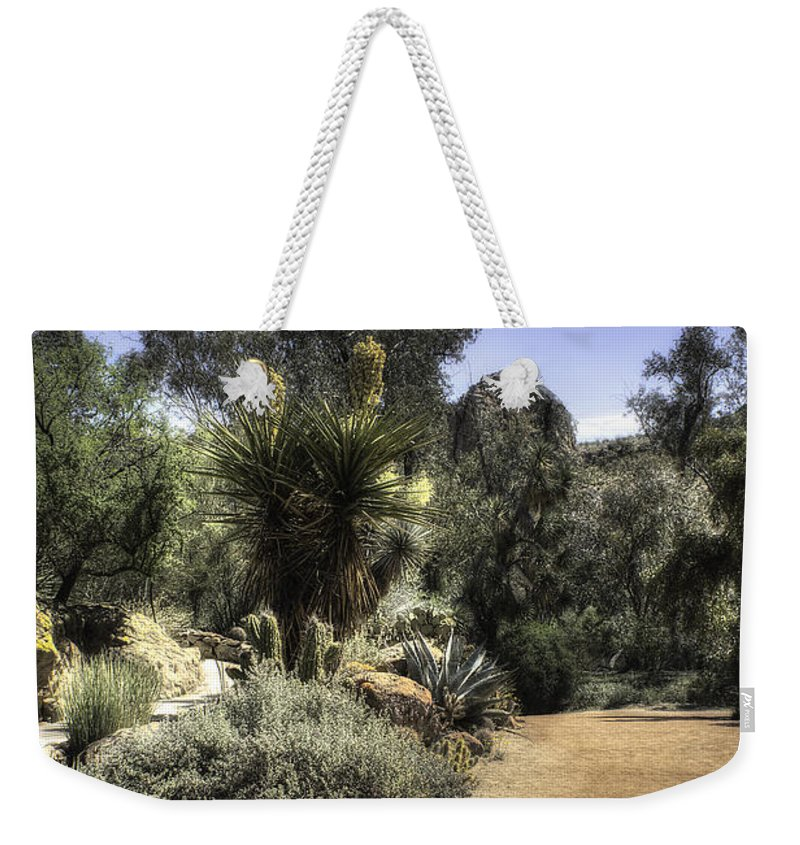 America Weekender Tote Bag featuring the photograph Desert Walkway by Lynn Geoffroy
