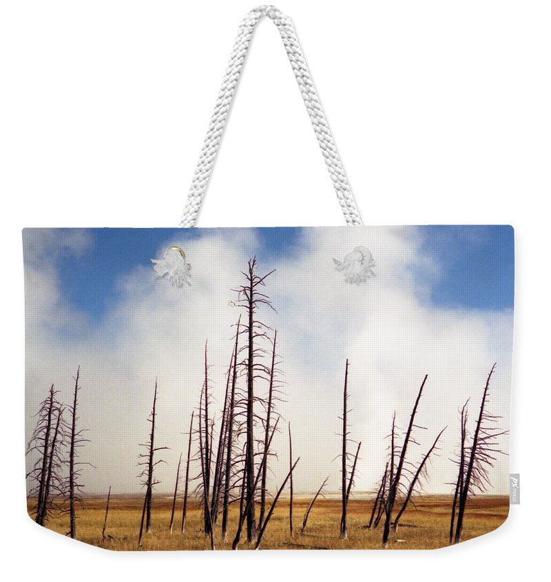 Desolation Weekender Tote Bag featuring the photograph Desolation by Richard Rizzo