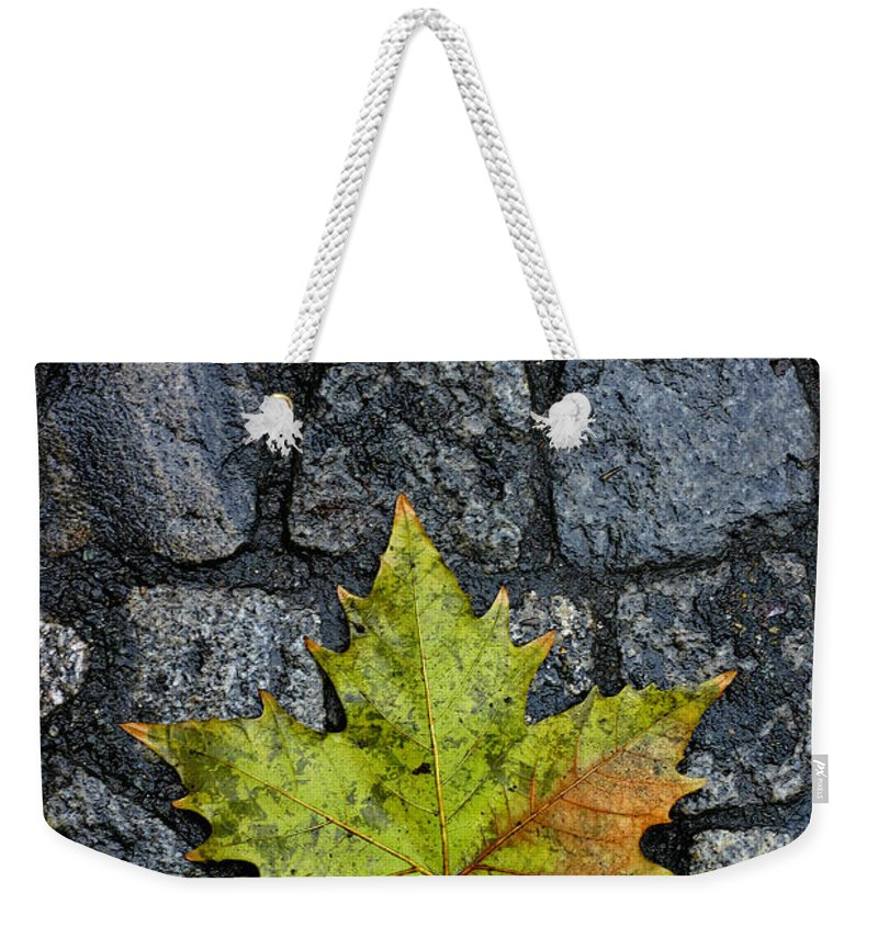Nature Weekender Tote Bag featuring the photograph Deville by Skip Hunt
