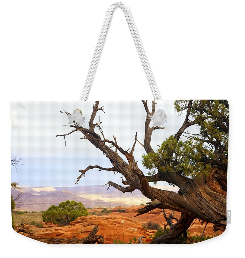 Southwest Art Weekender Tote Bag featuring the photograph Devils Garden 2 by Marty Koch