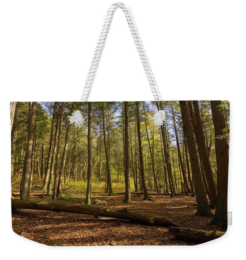 Woods Weekender Tote Bag featuring the photograph Devil's Hopyard Clearing by Kirkodd Photography Of New England