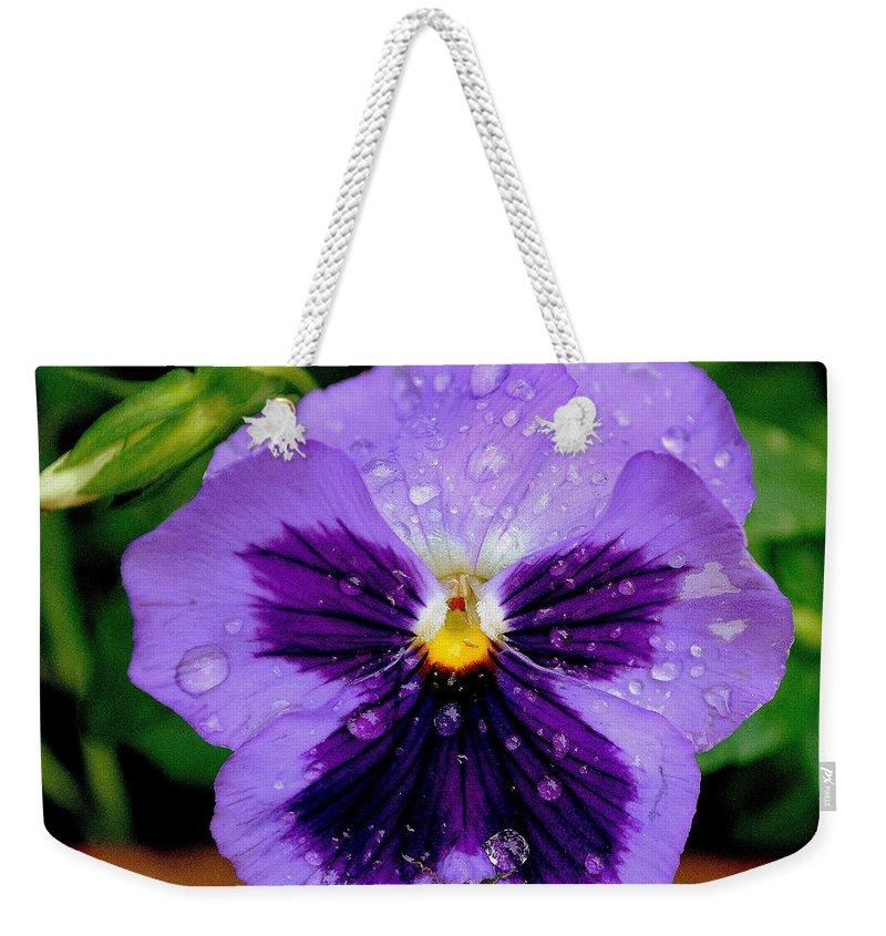 Dew Weekender Tote Bag featuring the photograph Dew Drop Butterfly by Frozen in Time Fine Art Photography
