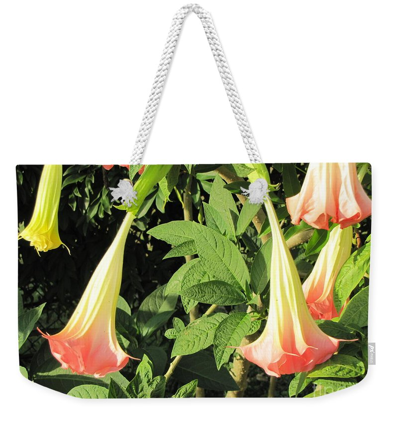 Flowers Weekender Tote Bag featuring the photograph Dew Drop by Michelle Powell