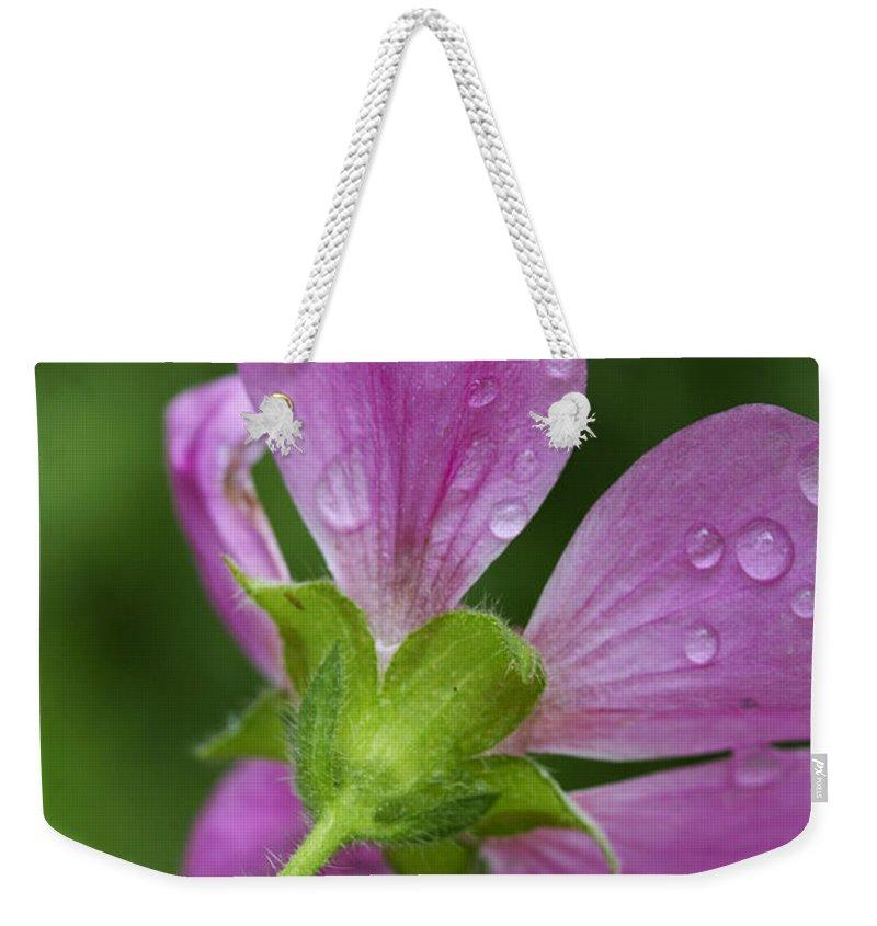 Flower Weekender Tote Bag featuring the photograph Dew Kisses by Deborah Benoit