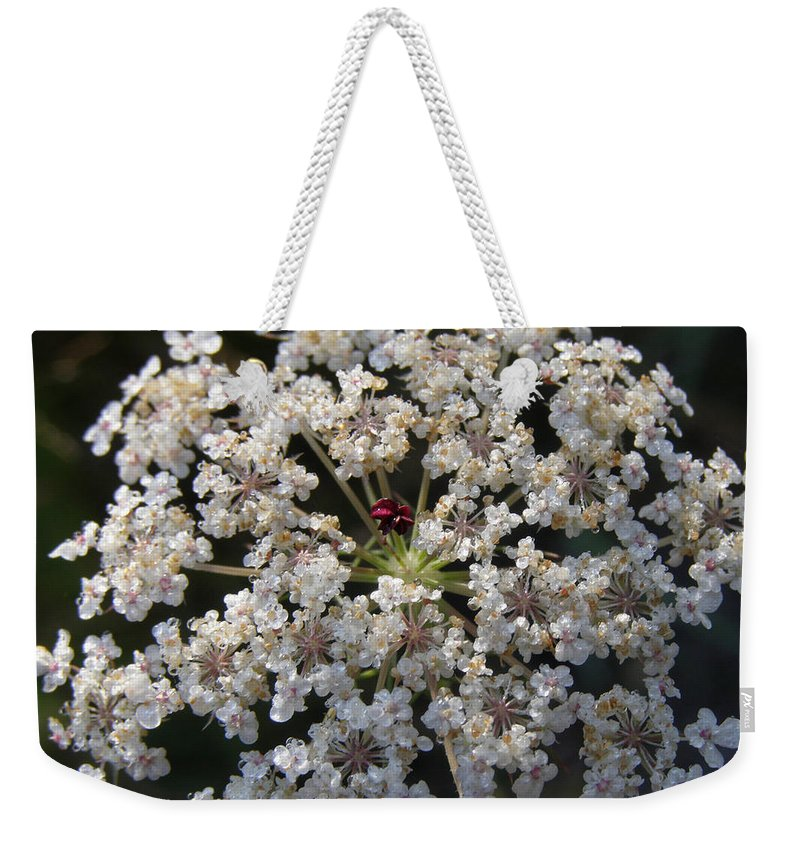 Wildflowers Weekender Tote Bag featuring the photograph Dew On Queen Annes Lace by Lynn Quinn