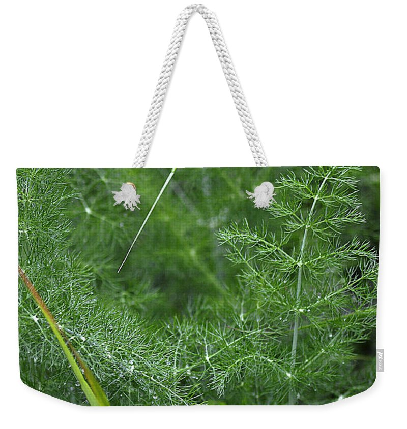 Clay Weekender Tote Bag featuring the photograph Dew On The Ferns by Clayton Bruster
