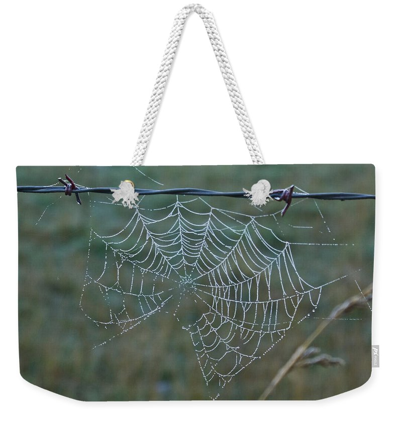 Spider Weekender Tote Bag featuring the photograph Dew On The Web by Douglas Barnett
