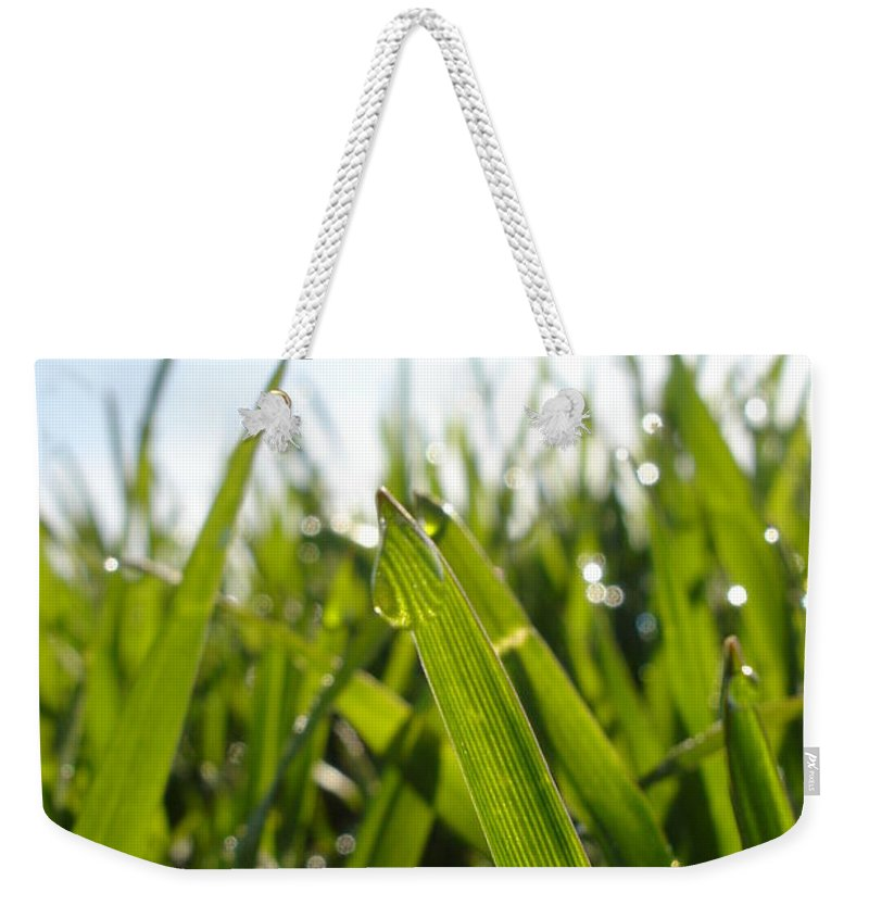 Flora Weekender Tote Bag featuring the photograph Dewdrops On New Wheat by Susan Baker