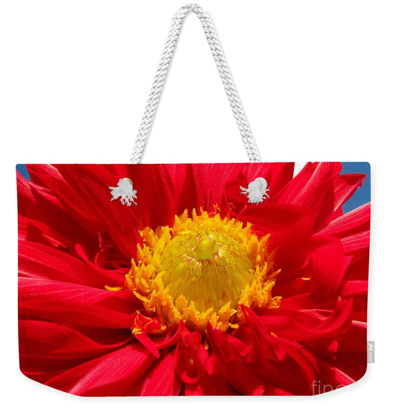 Dhalia Weekender Tote Bag featuring the photograph Dhalia by Amanda Barcon