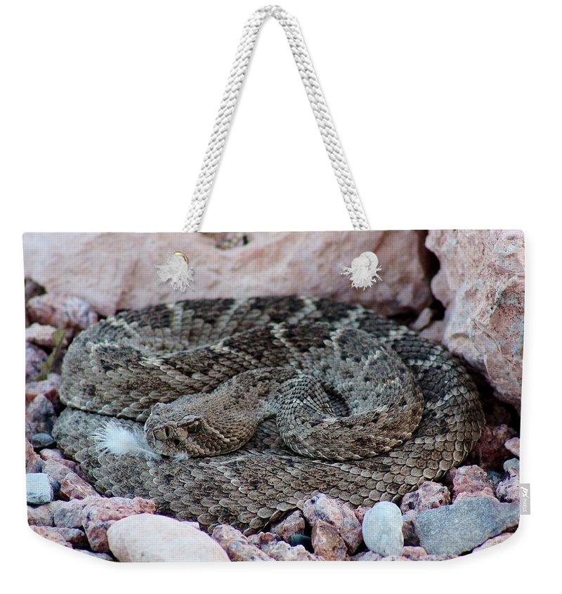 Wild Weekender Tote Bag featuring the photograph Diamondback Rattlesnake 062414a by Edward Dobosh