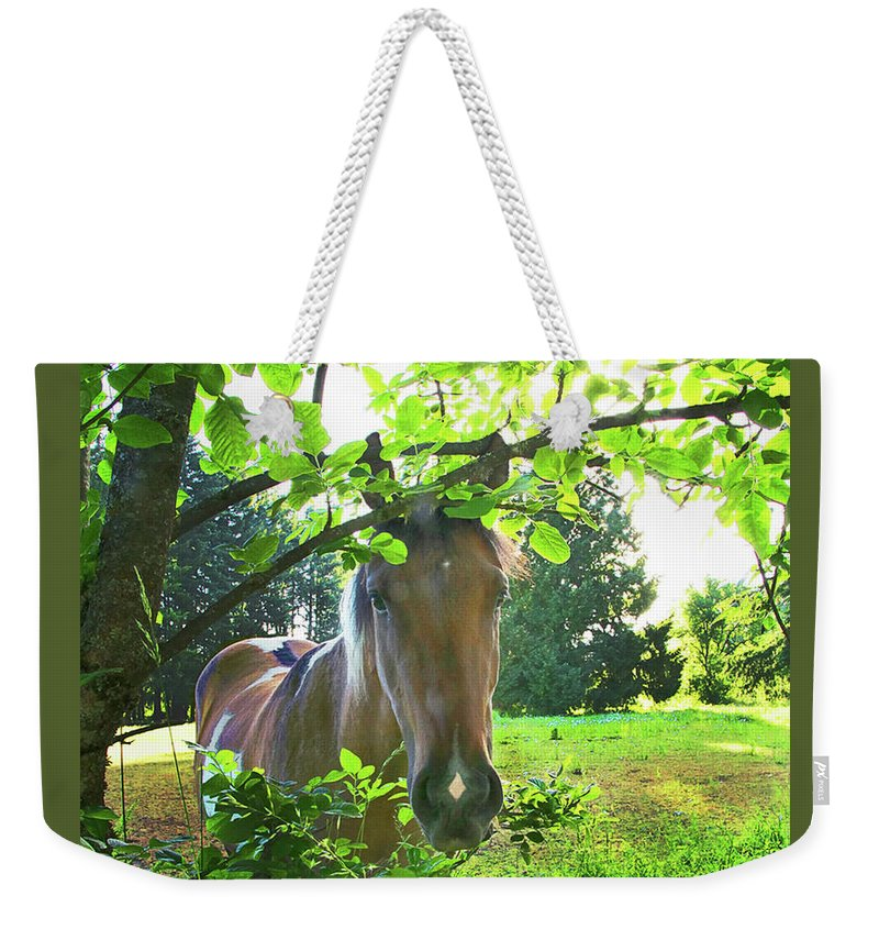 Paint Weekender Tote Bag featuring the photograph Diamonds Are A Girls Best Friend by Don Schimmel