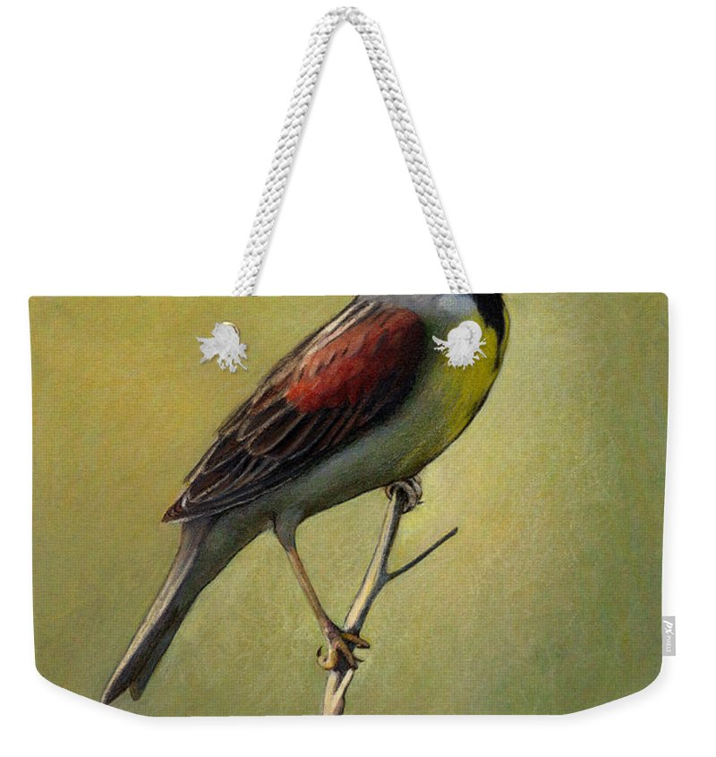 Birds Weekender Tote Bag featuring the drawing Dickcissel Summer Song by Bruce Morrison